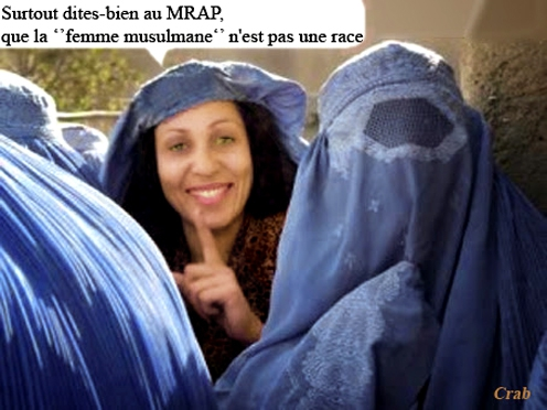 voiles islamiques.jpg